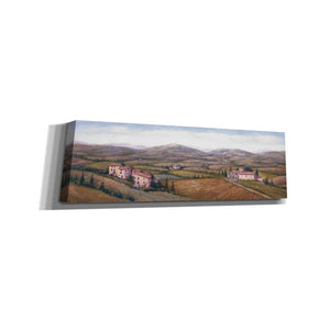 'The Hills Near Certaldo' by Barbara Felisky, Canvas Wall Art,Size 3 Landscape