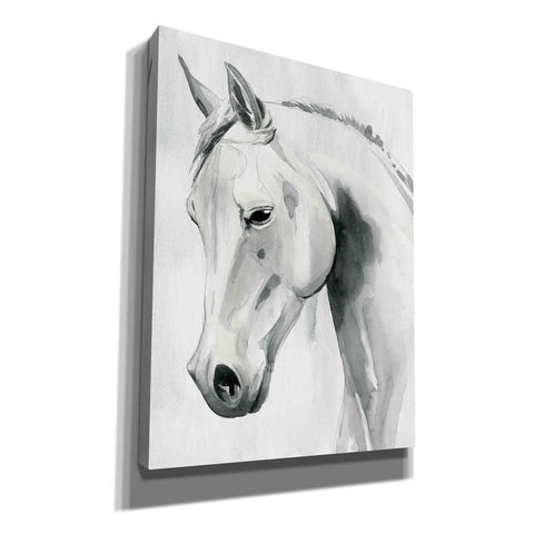 'Horse Whisper I' by Grace Popp Canvas Wall Art