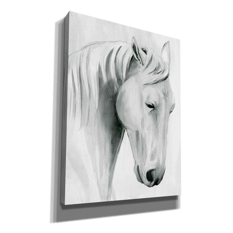 'Horse Whisper II' by Grace Popp Canvas Wall Art