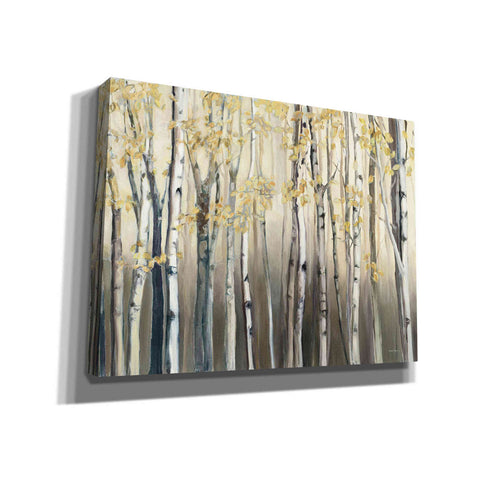 'Golden Birch III Landscape' by Marilyn Hageman, Giclee Canvas Wall Art