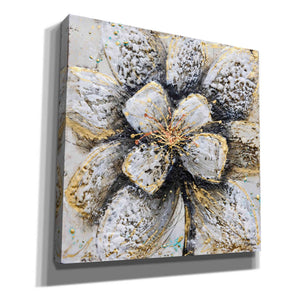 'Explosion of Petals' by Britt Hallowell, Giclee Canvas Wall Art