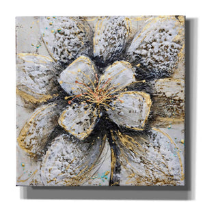 'Explosion of Petals' by Britt Hallowell, Canvas Wall Art,Size 1 Square