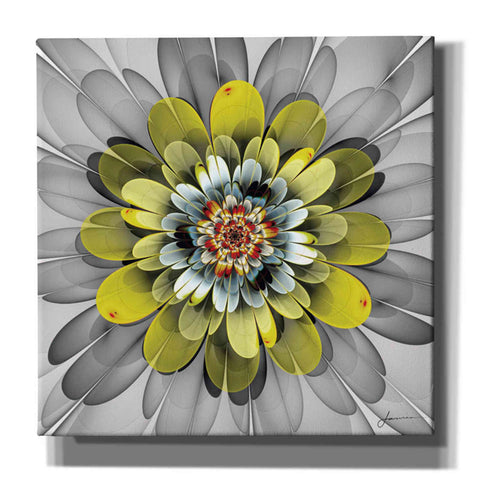 'Fractal Blooms IV' by James Burghardt Giclee Canvas Wall Art