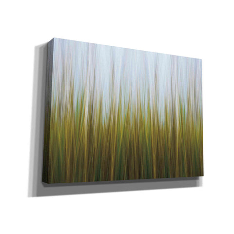 'Sea Grass Canvas' by Katherine Gendreau, Giclee Canvas Wall Art