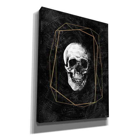 'Cosmic Skull' by Kyra Brown, Canvas Wall Art,Size C Portrait