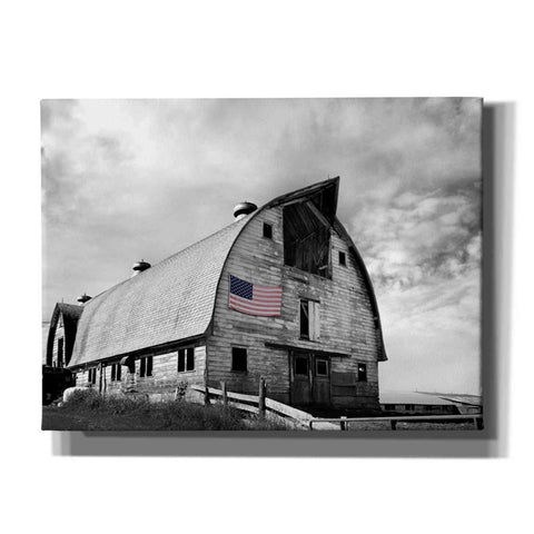 'Flags of Our Farmers X' by James McLoughlin Giclee Canvas Wall Art