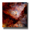 'Dark Nebulae' Hubble Space Telescope Giclee Canvas Wall Art