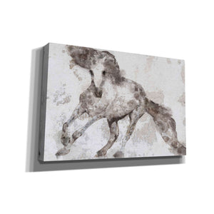 'Alydar Horse' by Irena Orlov, Canvas Wall Art