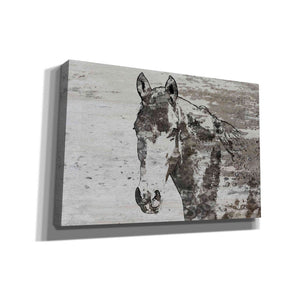 'Portrait of a Horse' by Irena Orlov, Canvas Wall Art