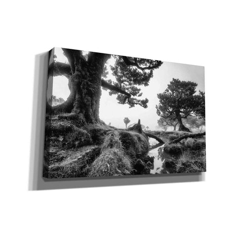 Image of 'Black & White Fanal' by Martin Podt, Canvas Wall Art,Size A Landscape