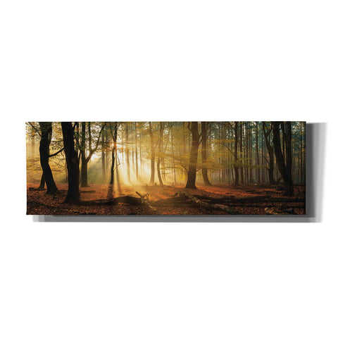 Image of 'Speulderbos Panorama' by Martin Podt, Canvas Wall Art,Size 3 Landscape