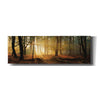 'Speulderbos Panorama' by Martin Podt, Canvas Wall Art,Size 3 Landscape
