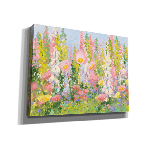 'Garden Pastels I Blue Sky' by Shirley Novak, Giclee Canvas Wall Art