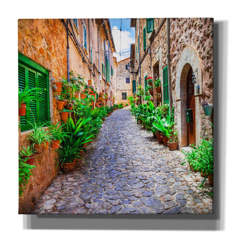 'Vecino I' Giclee Canvas Wall Art