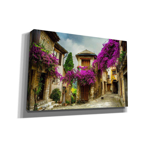 'Bougainvillea' Canvas Wall Art,Size A Landscape