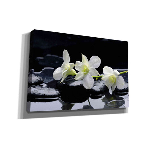 Image of 'The Light of Three' Canvas Wall Art