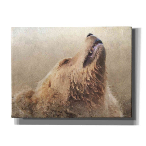 Image of 'Big Bear 1' by Karen Smith, Giclee Canvas Wall Art