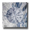 'Ocean Collection 2' by Stellar Design Studio, Giclee Canvas Wall Art