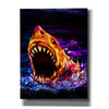 'Great White' by Michael StewArt, Giclee Canvas Wall Art