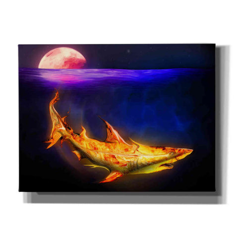 'Mako Shark' by Michael StewArt, Giclee Canvas Wall Art