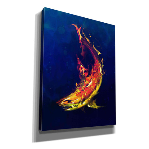 Image of 'Tiger Shark' by Michael Stewart, Giclee Canvas Wall Art