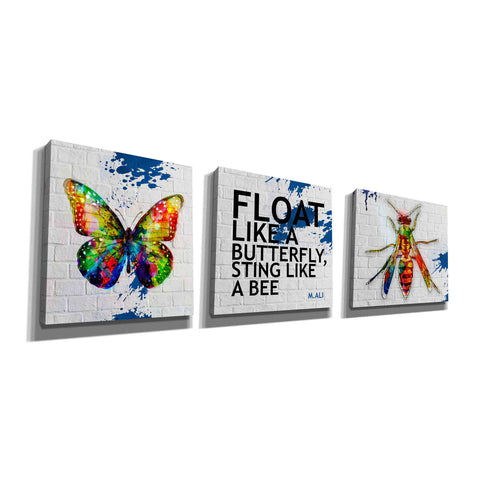 'Float Like a Butterfly, Sting Like a Bee Set' Canvas Wall Art