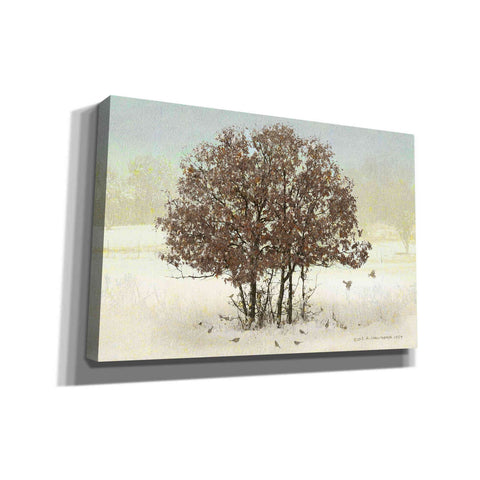Image of 'Juncos and Oak' by Chris Vest, Giclee Canvas Wall Art