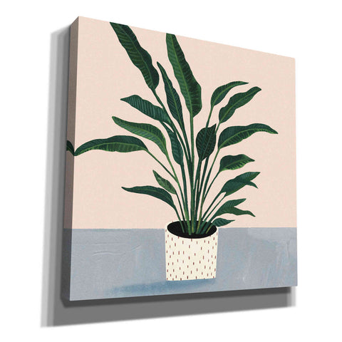 Image of 'Houseplant IV' by Victoria Borges Giclee Canvas Wall Art