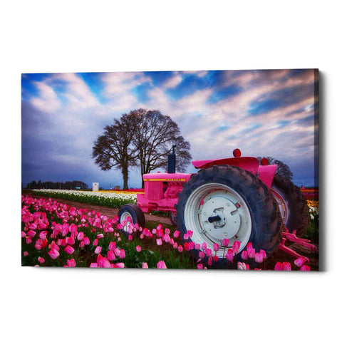 "Image of ""Jane Deere"" by Darren White, Giclee Canvas Wall Art"