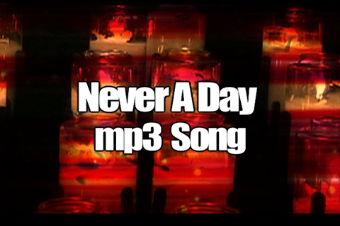 NEVER A DAY mp3 Song