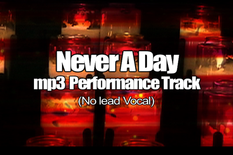 NEVER A DAY mp3 Track (No Lead Vocal)