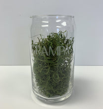 "Load image into Gallery viewer, 16oz ""Beer Can"" Glass"
