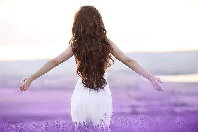 Use and Benefits of Lavender Oil for Hair
