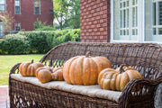 Flat Bottom Pumpkin - Shop House Market