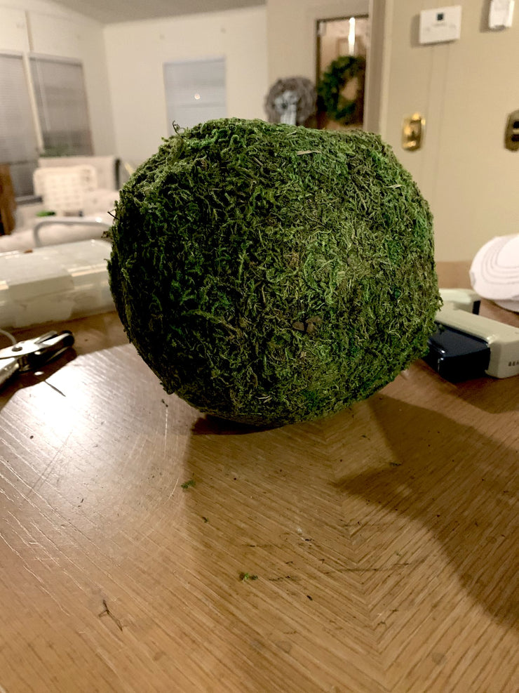 "6"" Green Moss Ball - Shop House Market"