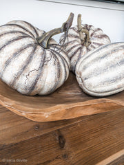 Farmhouse Pumpkins Set of 5 - Shop House Market