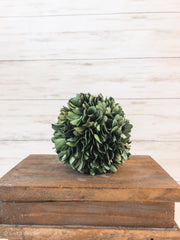 "4"" Preserved Boxwood Ball - Shop House Market"