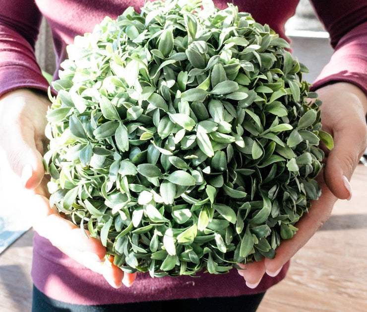 Faux Boxwood Ball (Large)