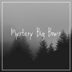 Mystery Big Bows