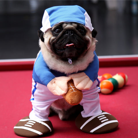 Dog Rugby Halloween Costumes - Frenchiely