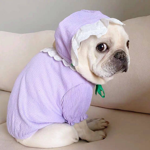 dog vintage summer purple shirt with lace hat- Frenchiely