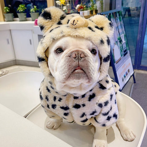 Frenchiely French Bulldog Leopard Winter Jacket Coat 0