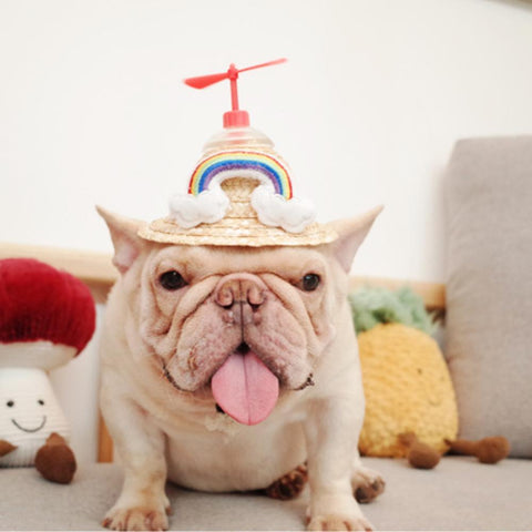 Dog Spinning Straw Hat with Drawcord for French Bulldog - Frenchiely