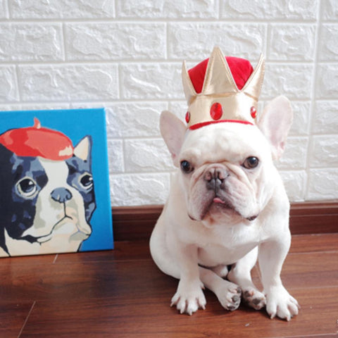 Dog Costume Crown Headwear Hat - Frenchiely