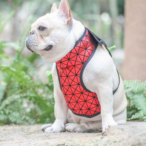 Dog Batman Harness Vest for Small Dogs - Frenchiely