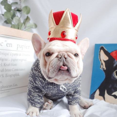 Dog Costume Crown Headwear Hat for French Bulldog by Frenchiely