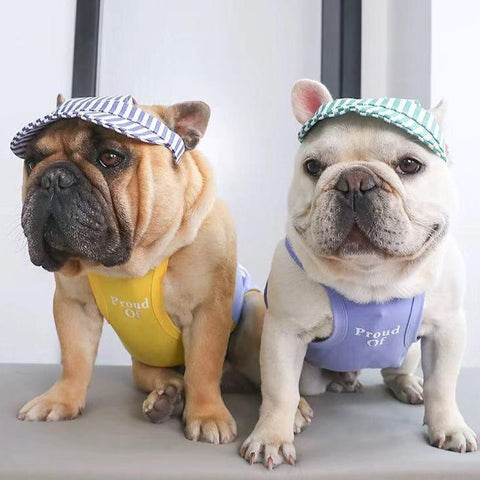 Dog Sun Shield Protective Hat for Frenchies