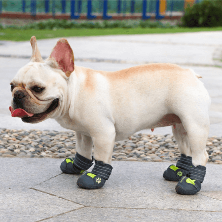 Dog Waterproof Rain Snow Boots Shoes Sneakers - Frenchiely