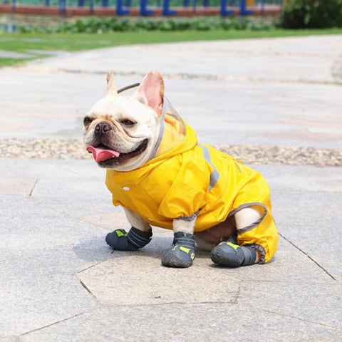 Dog Waterproof Rain Snow Boots Shoes Sneakers