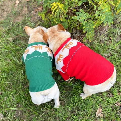 French Bulldog Christmas Reindeer Sweater